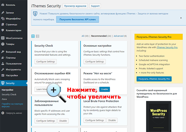 Настройки Itheme Security