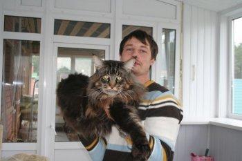 кот рекордсмен - клиент Интернет-магазина зоопродуктов