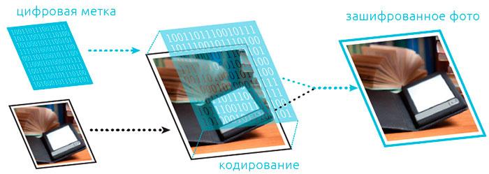 Как добавить цифровую метку в фото